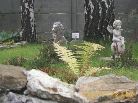 Fragment wrzosowiska z ogrodowymi rzeźbami